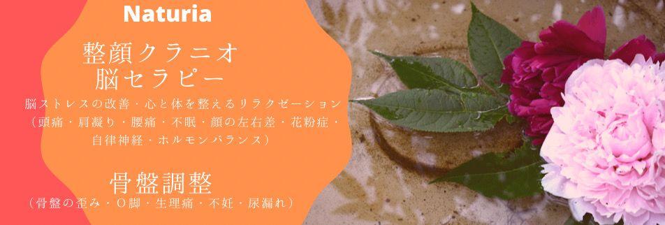 新潟県長岡市 頭蓋骨・骨盤調整サロン Naturia(ナチュリア)